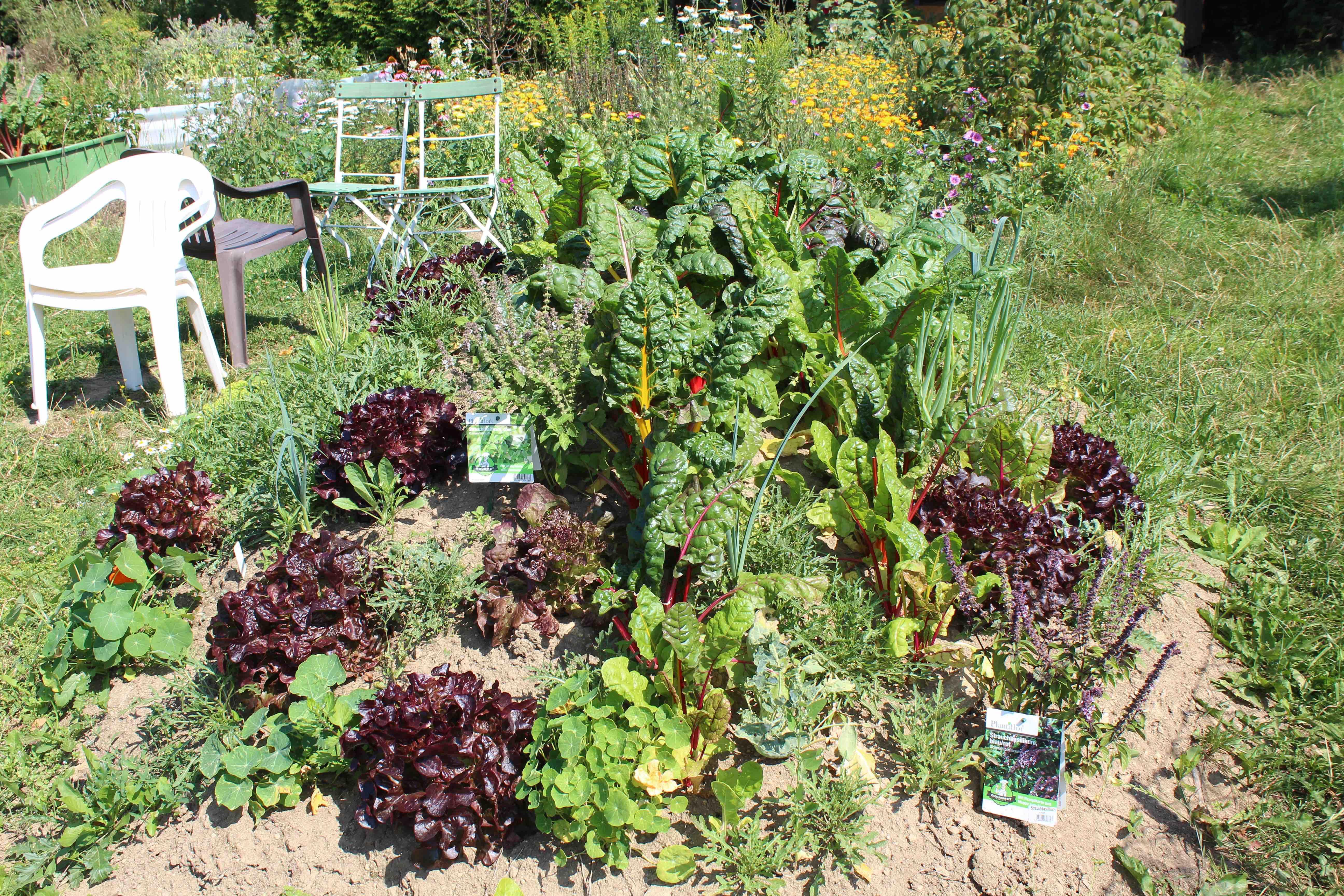 Gemüsehügelbeet